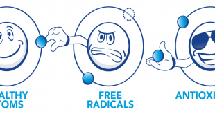 What are Free Radicals and How are the Formed