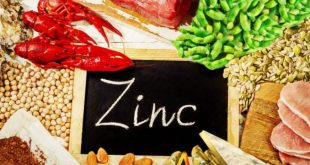 Top 10 Zinc Rich Foods and their Benefits..